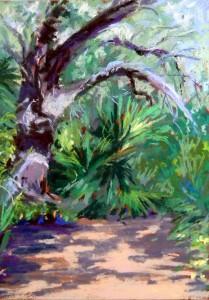 Live Oaks Path